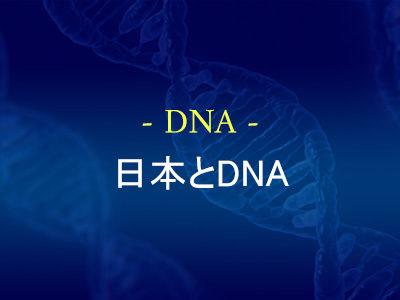 日本とDNA