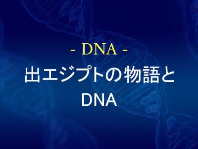 出エジプトの物語とDNA