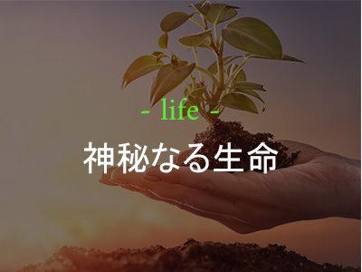 神秘なる生命