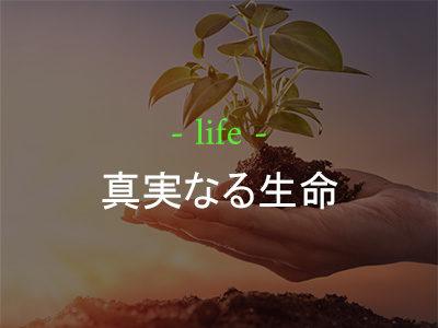 真実なる生命